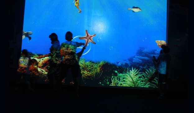 Interactive Wall Exhibit at One of the Largest Zoo in United States